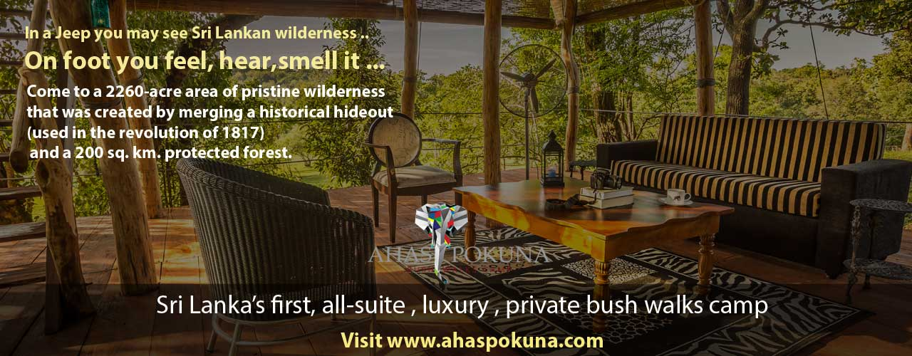 Aaspokuna the first bush-walks camp in Sri Lanka
