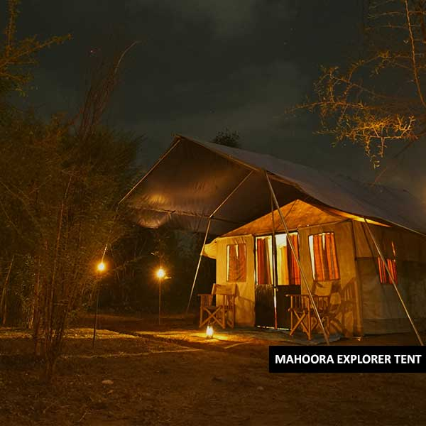 explorer tent mahoora tented safari camps