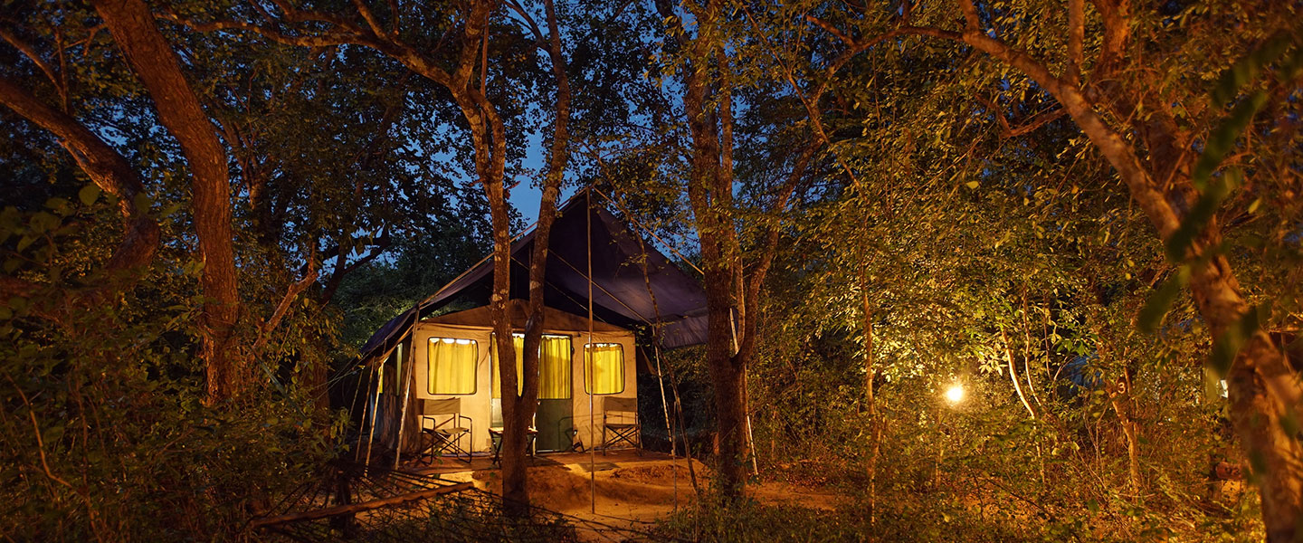 mahoora explorer tent at yala national park sri lanka