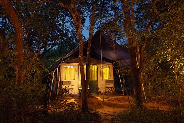 mahoora tented safari accommodation at yala