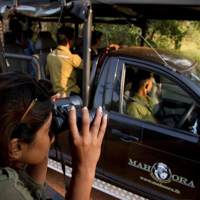 Mahoora Wildlife Safaris