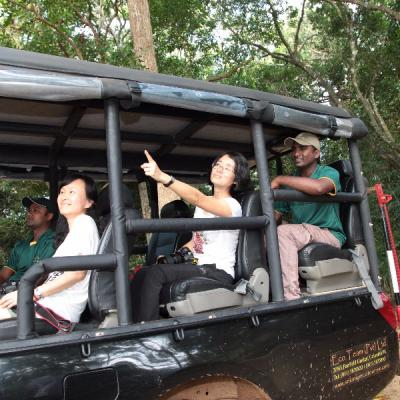 Mahoora safaris at Wilpattu National Park