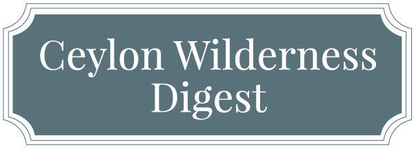wilderness digest cover